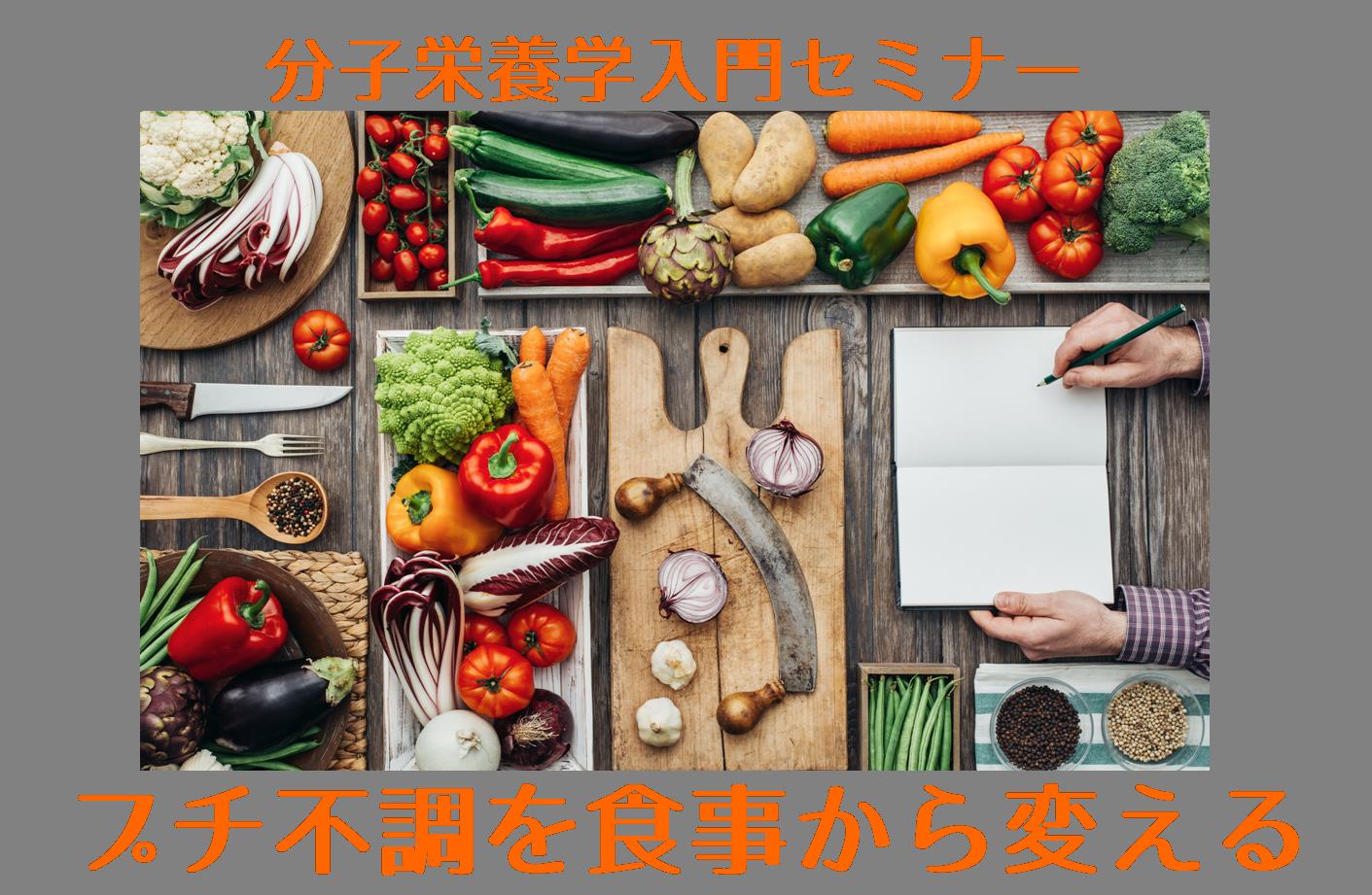 分子栄養学入門セミナー「プチ不調を食事から変える」三大栄養素編